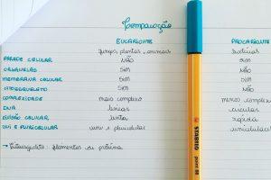 Células procariontes e eucariontes